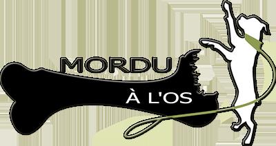 Dressage de chien Drummondville